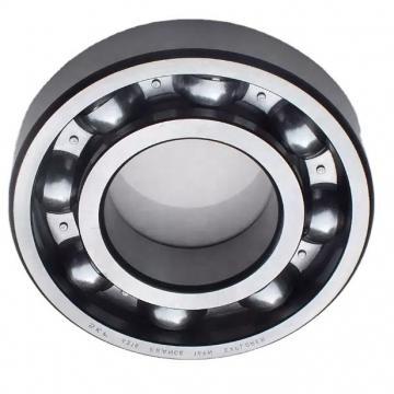 High Precision NSK Spherical Roller Bearing 22213 22213c 22213K 22213ck 22213cc MB/W33